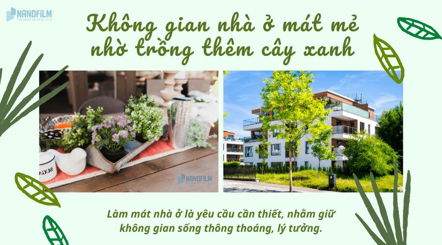Không gian nhà ở mát mẻ nhờ trồng thêm cây xanh