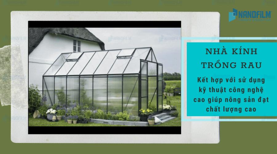 Nên chọn vật liệu làm nhà kính trồng rau như thế nào?