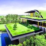 Chống Nóng Bằng Cây Xanh – Nhà Đẹp, Nhà Mát Không Lo Bị Nóng