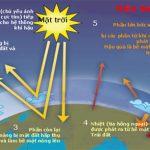 Dán kính giảm nóng hiệu ứng nhà kính tại HCM